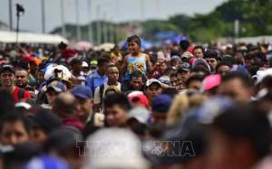 Hàng trăm người di cư tìm đường tới Mỹ